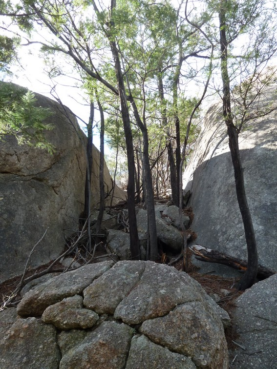 Gully access to Lookout climbing area
