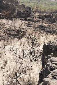Burnt Valley near Hlw Mtn - Marty Schoo