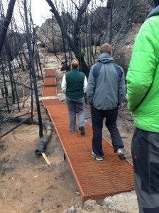 new walkway section across fragile ground - new access track Summerday