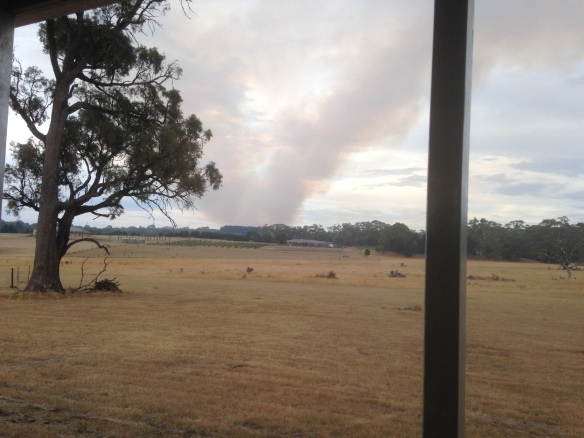 Photo 1 - Smoke plume