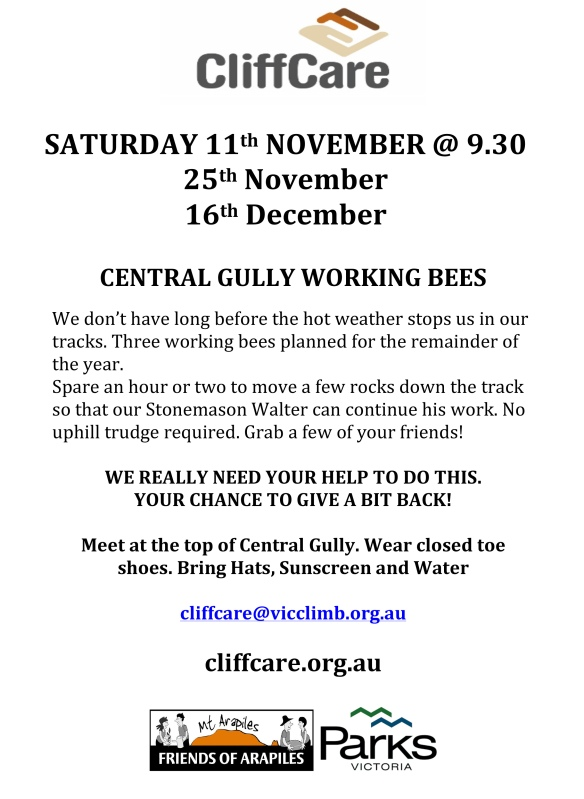 central gully working bee 11 Nov 17