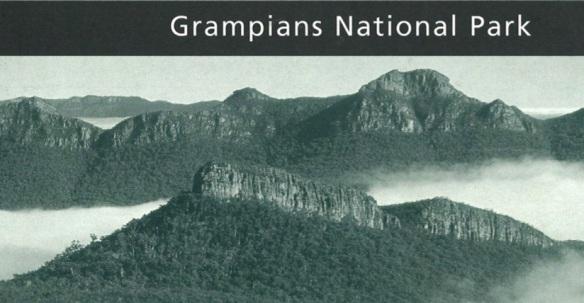 gnp image